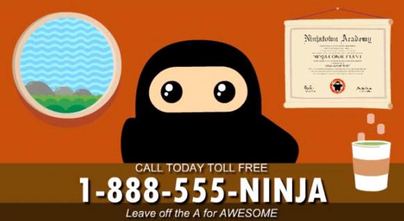 ninja-consulting-2
