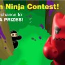 Hidden_Ninja_Contest